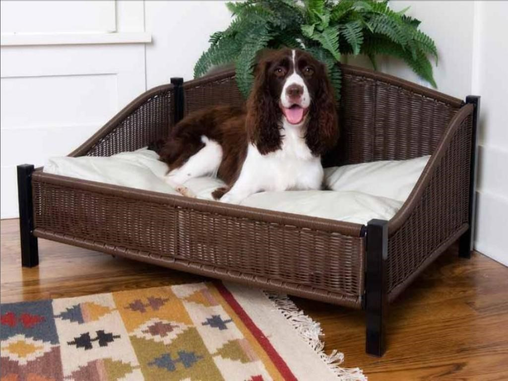 The bed for dogs